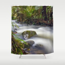 Cement Creek #1 Shower Curtain