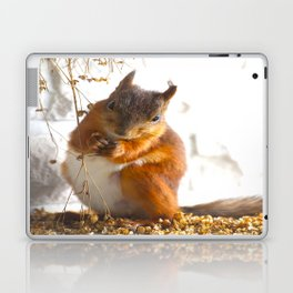 Mommy Squirrel  Laptop & iPad Skin