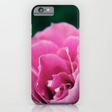 Flower in Bloom iPhone 6s Slim Case