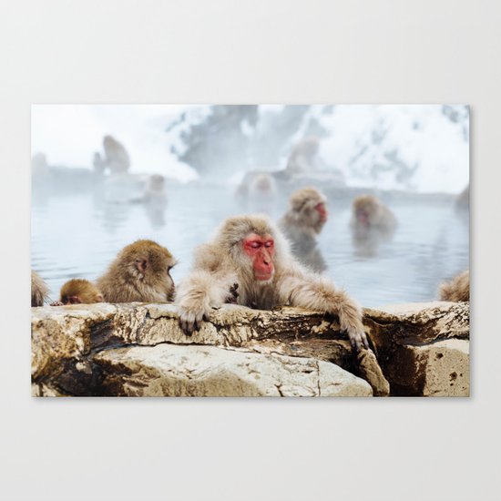 Ice Monkey Canvas Print