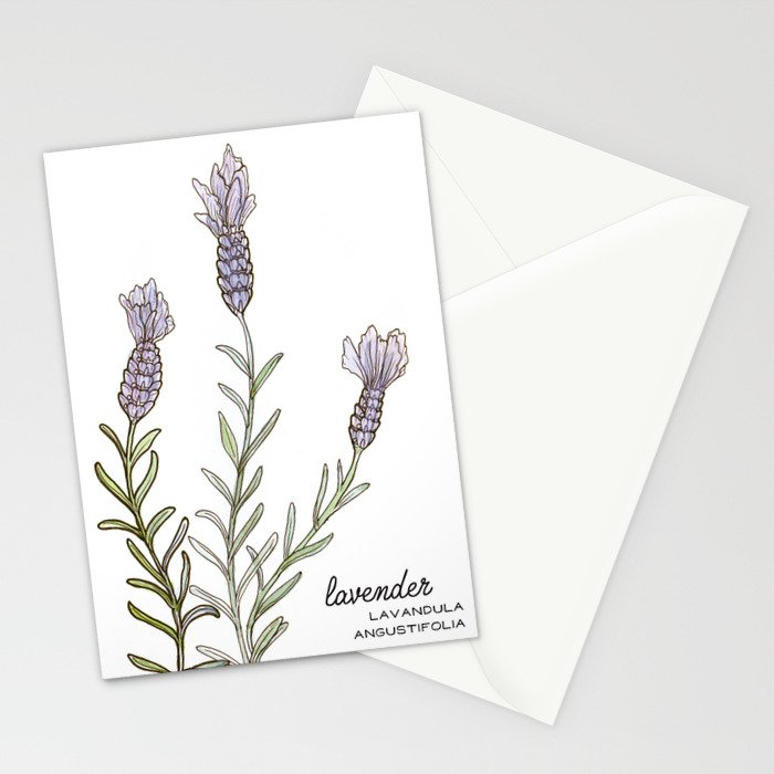 tea botanicals | Lavender // calming herbal Stationery Cards
