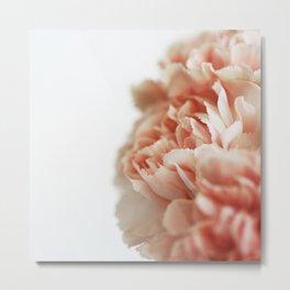 Pale Pink Metal Print