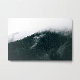 Forest Fog XIV Metal Print