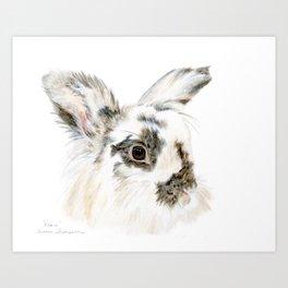 Pixie the Lionhead Rabbit by Teresa Thompson Art Print