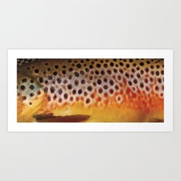 Montana Brown Trout Fish Art Print