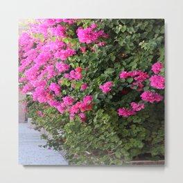 Beautiful Flower Wall Metal Print