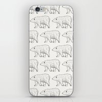 bears iPhone & iPod Skins featuring Bears by Adam Lindfors