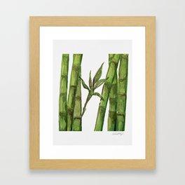 Bamboo Watercolor - Green Palette Art Print Framed Art Print