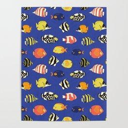 Exotic School Of Reef Fish Poster