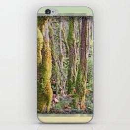 WARM AUTUMN RAINFOREST iPhone Skin