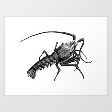 Ornate Lobster Art Print