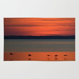 A flock of geese flying north across the calm evening waters of the bay Rug