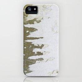 fish backbone iPhone Case