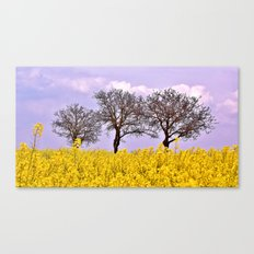 Spring heaven Canvas Print