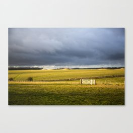 Stonehenge nature Canvas Print