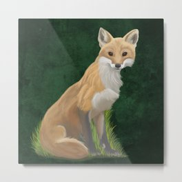 Playful Red Fox Metal Print