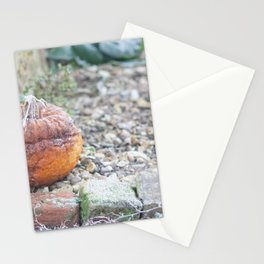 I Guess Halloween Is Over Stationery Cards