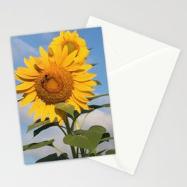 Sunflower with Bees Stationery Cards