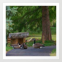 Lazy Ducks Art Print