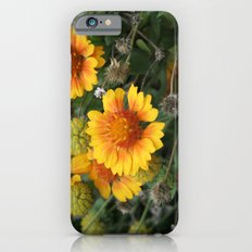 A Full Cycle iPhone 6s Slim Case