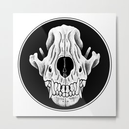 Amos Fortune Circle Skull Logo Metal Print