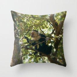 Capuchin Contemplation Throw Pillow