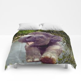 Elephant and Water Comforters