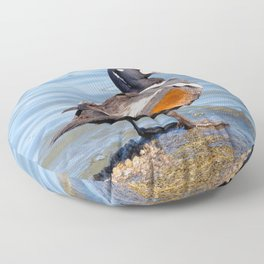 Beautiful Harlequin Duck on the Rocks Floor Pillow
