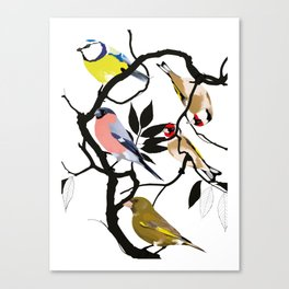 Dawn Chorus Canvas Print
