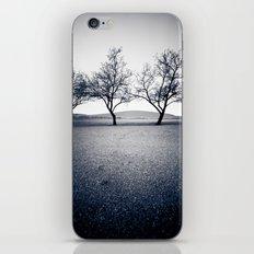 bruneau sand dunes. iPhone & iPod Skin