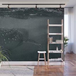 Whaleshark Wall Mural