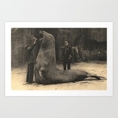 Elephant Seal Paris Parc Zoologique - Vintage / Antique French Post Card From the 1930's  Art Print