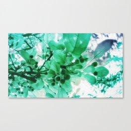 See Through Leaves Canvas Print