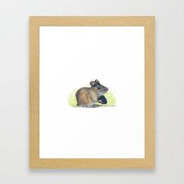 Field Mouse  Framed Art Print