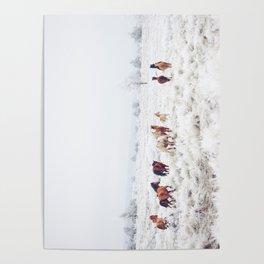 Winter Horses Poster