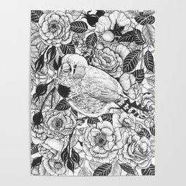 Zebra finch and rose bush ink drawing Poster