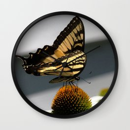 Swallowtail Butterfly on Echinacea Cone Flower Wall Clock