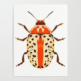 White and Orange Beetle Poster