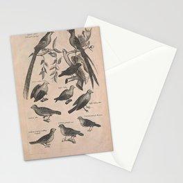 036-passer, emberiza5 Stationery Cards