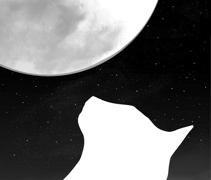Black And White Dreaming Cat and Moon Design Metal Travel Mug