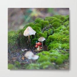 Fairy Home Metal Print