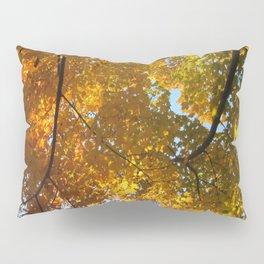 Rainbow Foliage Pillow Sham