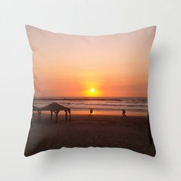 Shabbat Shalom From Tela-Viv Israel. Throw Pillow
