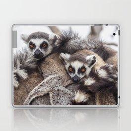 Lemur catta animals Laptop & iPad Skin
