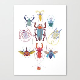 Stitches: Bugs Canvas Print