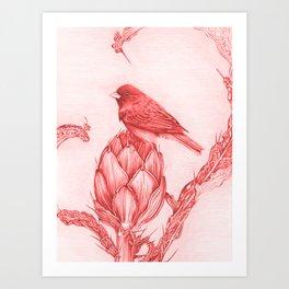 Finch on Spiny Artichoke Art Print