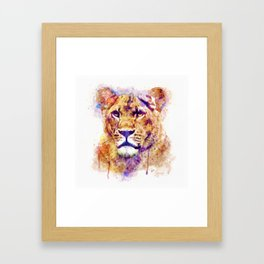 Lioness Head Framed Art Print