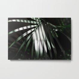 Palm No. 1 Metal Print