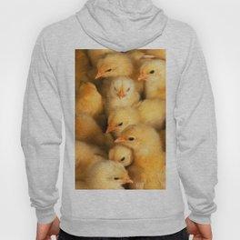 Clutch of Yellow Fluffy Chicks Hoody