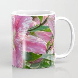 Lovely pink stargazers Coffee Mug